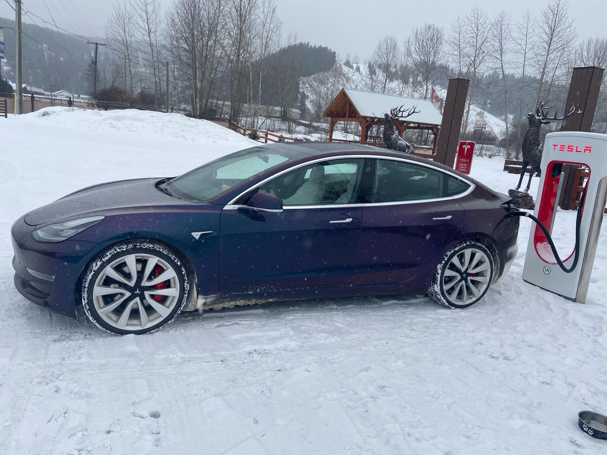 Τα Tesla σώζουν από τον χιονιά