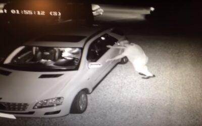 Ιδιοκτήτης πιάνει τον ληστή μέσα στο αμάξι του και τον κάνει ασήκωτο στο ξύλο! (Video)