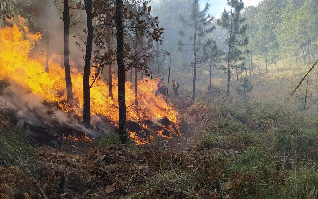 Ενημέρωση από την ΥΠΑ λόγω των πυρκαγιών
